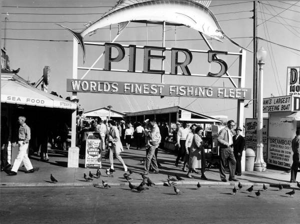 Our Story: Pier5ive reminiscent of Miami's old Pier 5. Luxury living today